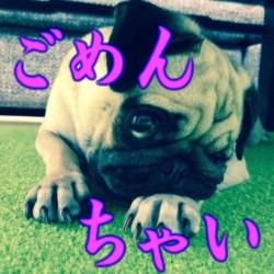 image のコピー 7